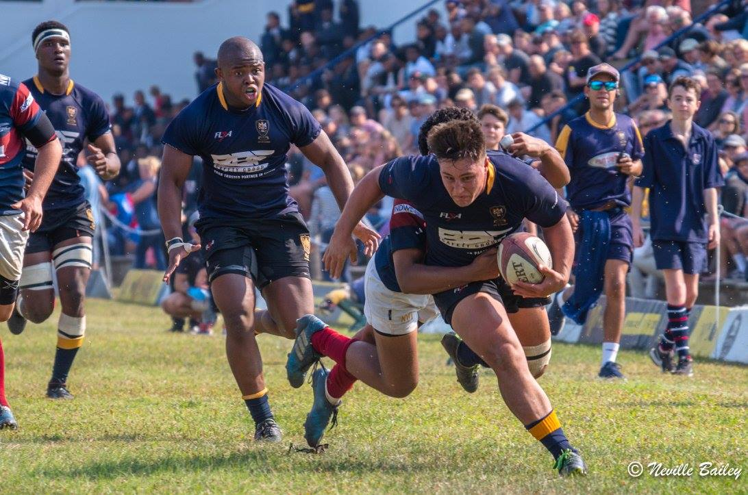 1st XV Rugby vs Westville Boys' : Match Report