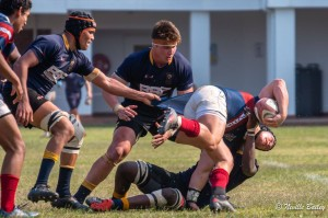 Rugby vs Westville (8)